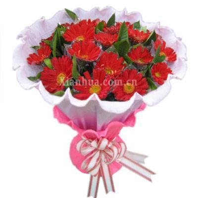 丝带扎束  鲜花朵数: 15朵 花语: 父亲 祝您 福如东海 寿比南山.